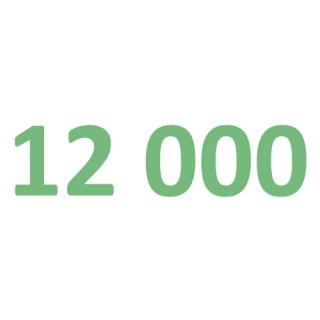 12000 рублей